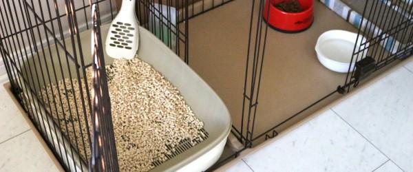 犬小屋・ゲージ・フェンスなどのペット用品を処分する方法